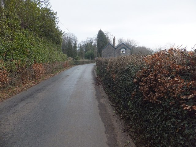 Beech Grove on Luscombe Hill
