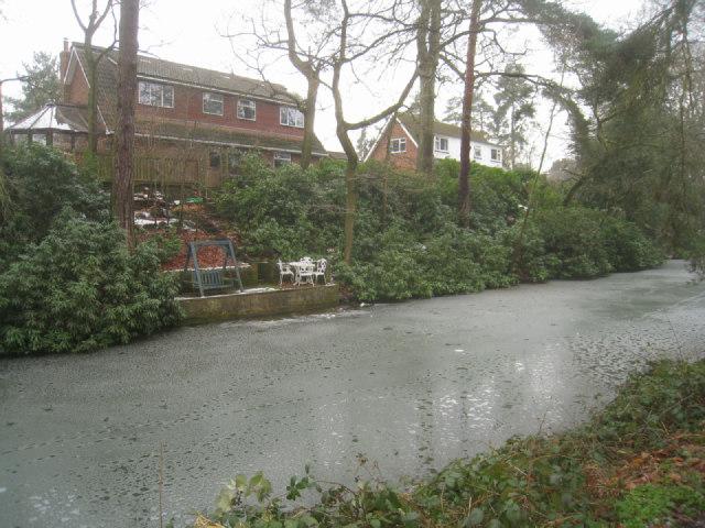 Private landing - Basingstoke canal
