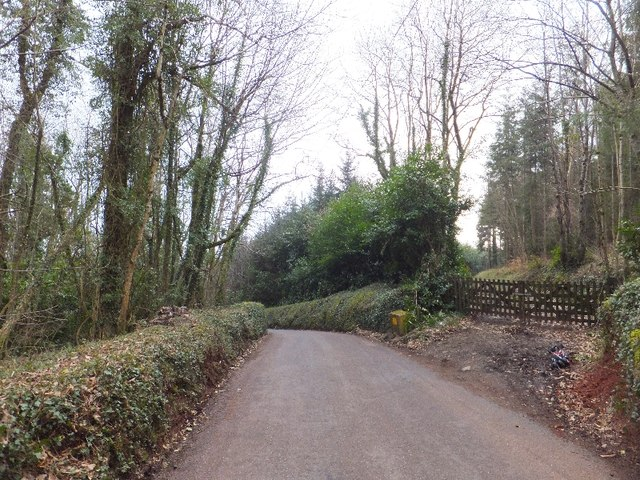 Track into Luscombe Wood off Luscombe Hill