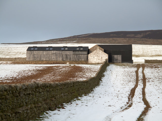 Barns in fields on north side of Teesdale