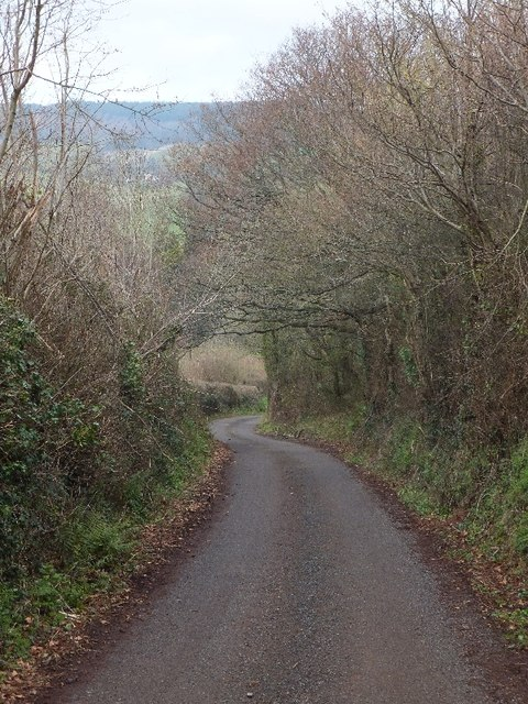 Looking downhill near Broomhouse Farm