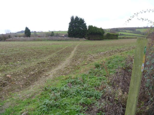 Towards the farm