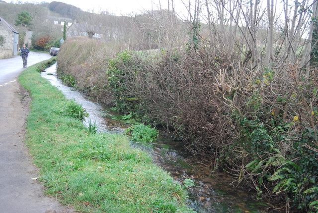 Stream by Litton Lane