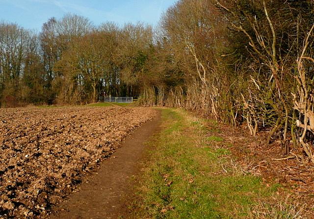 Footpath past Raans Farm