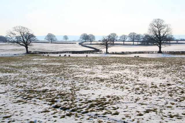 Winter field at Hattons Green