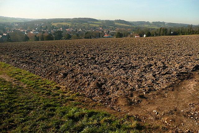 Farmland above Amersham old town