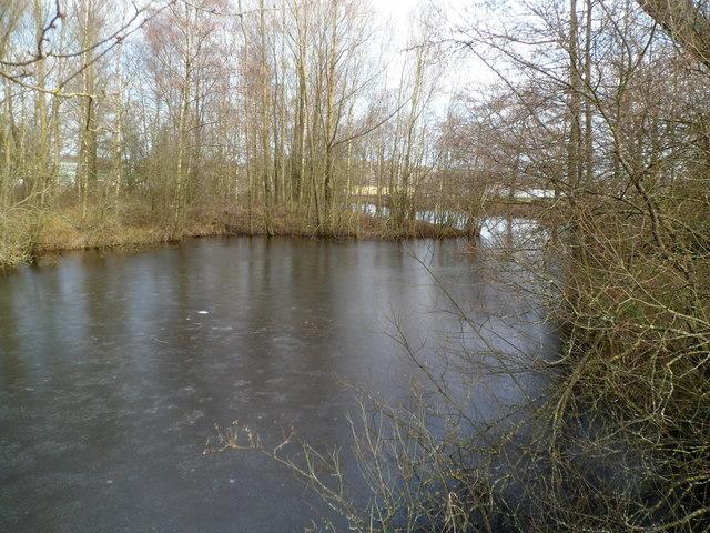 Southern edge of a lake, Glan Llyn, Newport