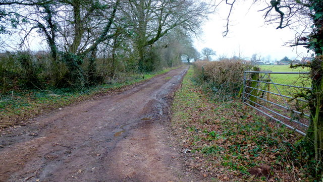 Track to Wards Farm
