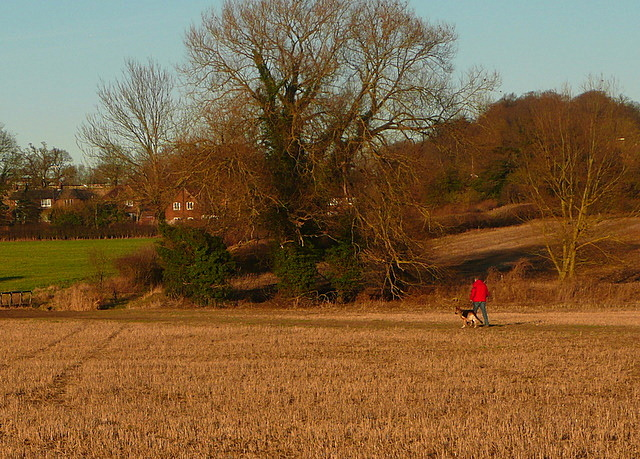 Walking across to the Misbourne