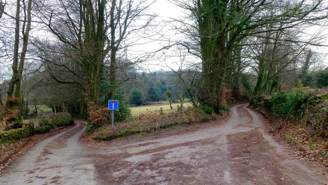 Lanes divide