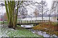 SO8377 : Bridge over the brook at Springfield Park, Kidderminster by P L Chadwick