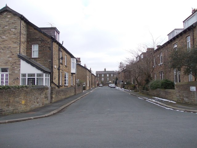 Ivy Grove - Ivy Road