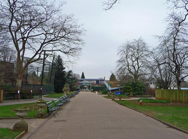 The Top Terrace, Bristol Zoo