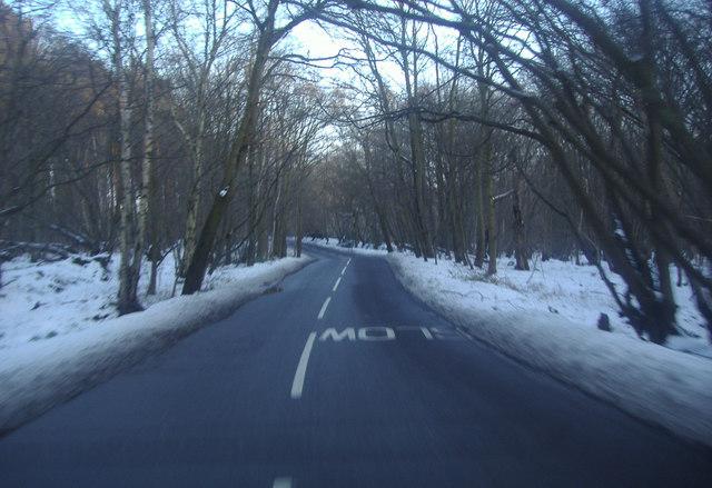 White Stubbs Lane heading for Broxbourne