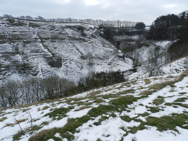 Deep Dale, in winter