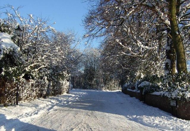 Granville Park - December 2010