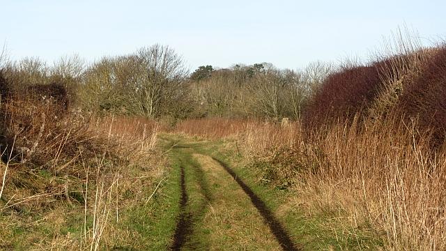 Approaching Roxburgh Junction