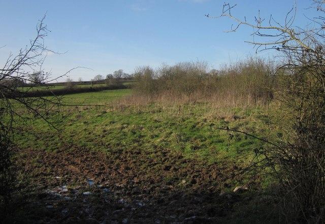 Field near Blackwater Road