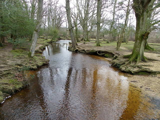 Ober Water near Brockenhurst
