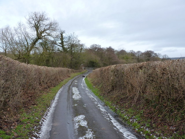 Down the lane to the bridge over the Harley Brook