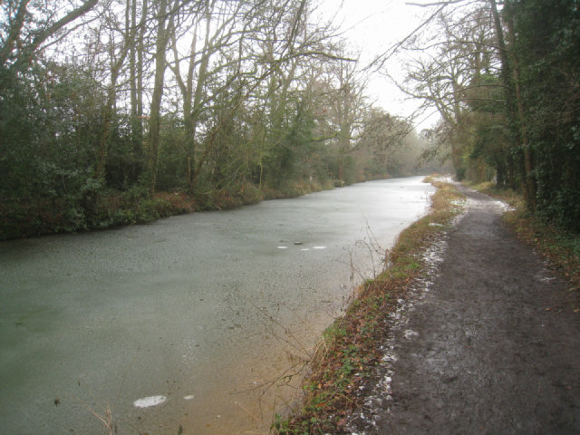 Basingstoke canal near Crookham village