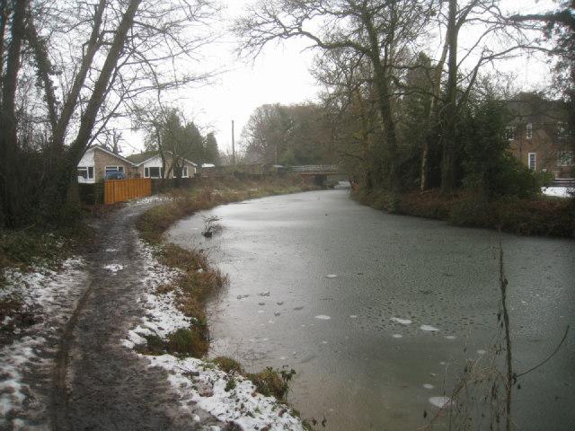 Basingstoke Canal near Coxheath Bridge