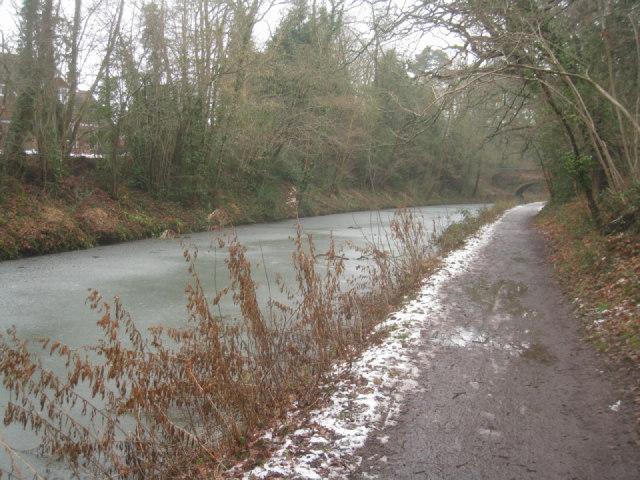 Basingstoke Canal approaching Malthouse Bridge