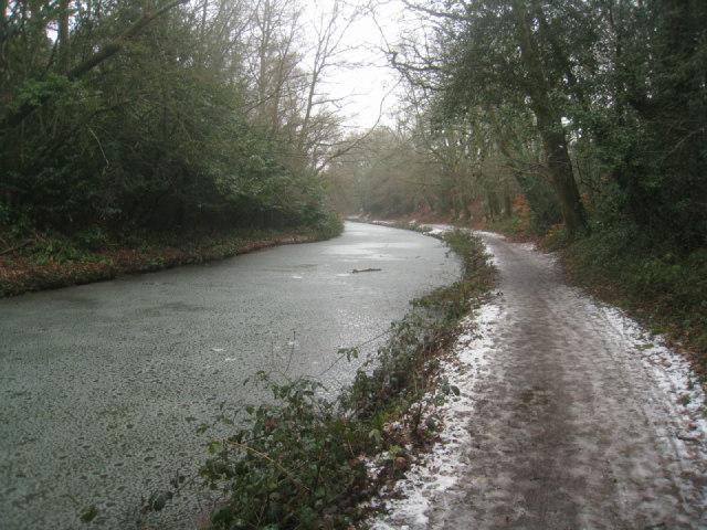 Basingstoke Canal south of Crookham village