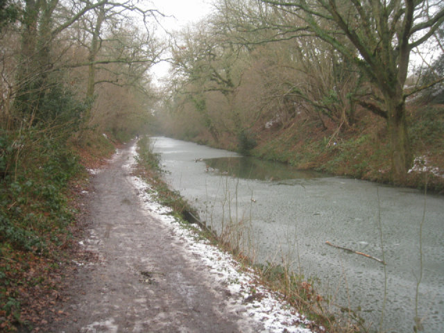 Basingstoke canal in a slight cutting