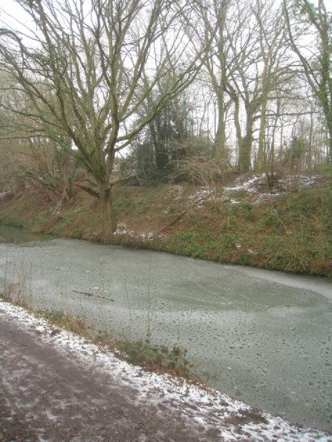 Semi frozen Basingstoke canal