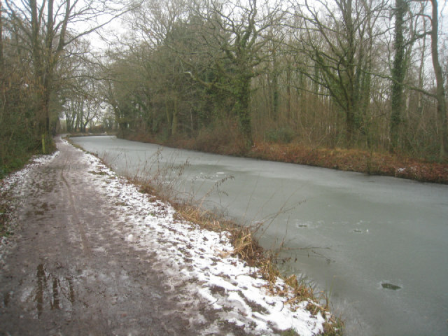 Basingstoke canal by Zebon Copse