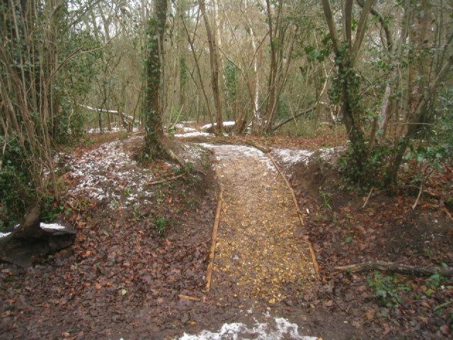 Newly laid path into Zebon Copse