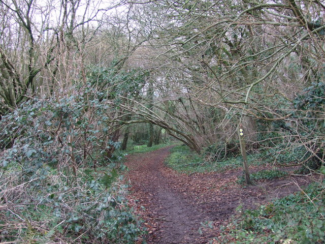Footpath Down to Hinton Martell