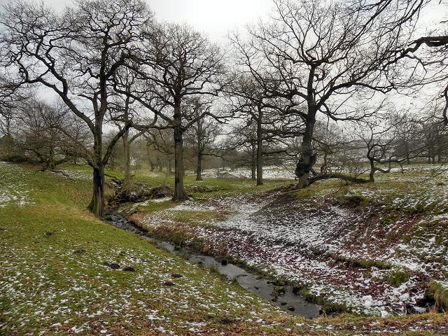 Lyme Park, Bollinhurst Brook