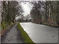SJ9586 : Macclesfield Canal, Windlehurst by David Dixon