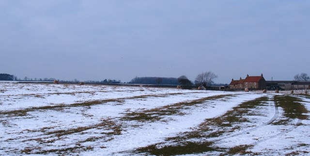 Frozen fields at Old Hall Farm