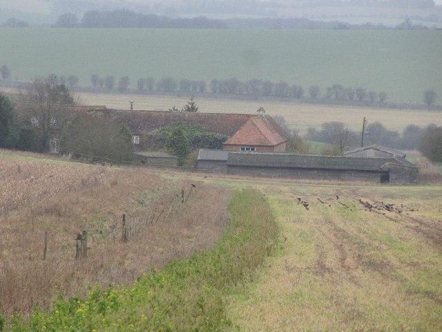 Farm down the hill