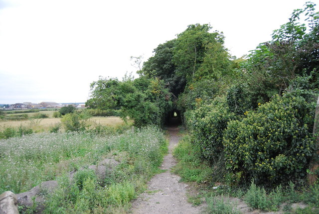 Medway Valley Walk leaves Old Church Rd