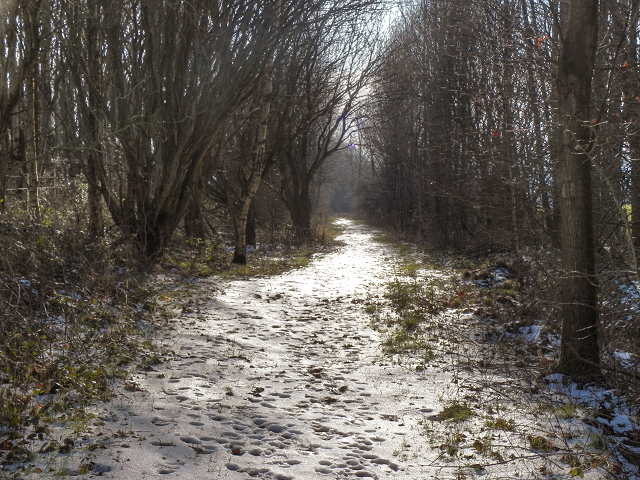 Footpath Towards Hag Fold