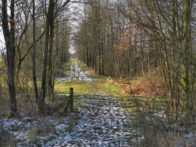 Footpath Near Chequerbent