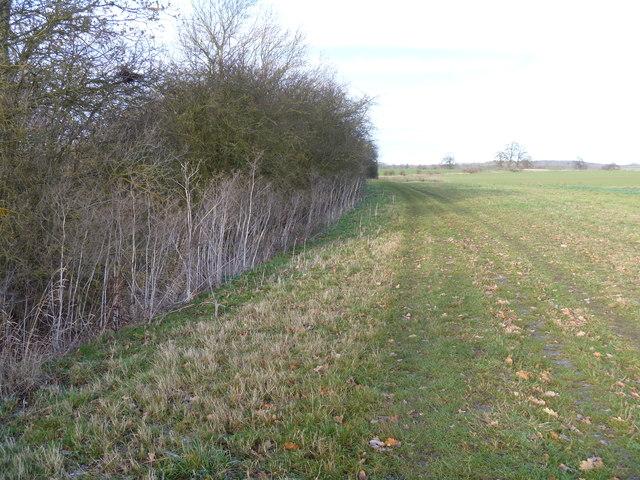 Field edge bridleway
