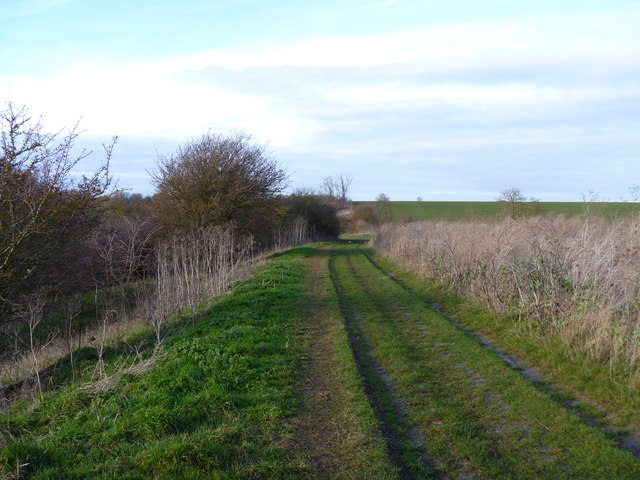 Bridleway on track