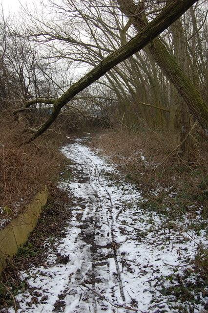 Path Adjacent to Shortbrook