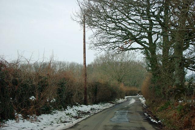 Ailies Lane