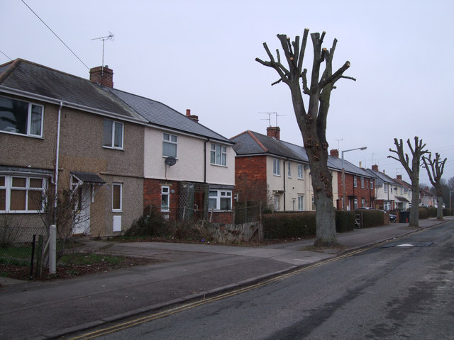 Houses and trees, Limes Avenue, Pinehurst