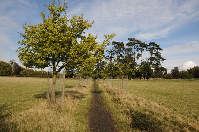 Footpath to Wick