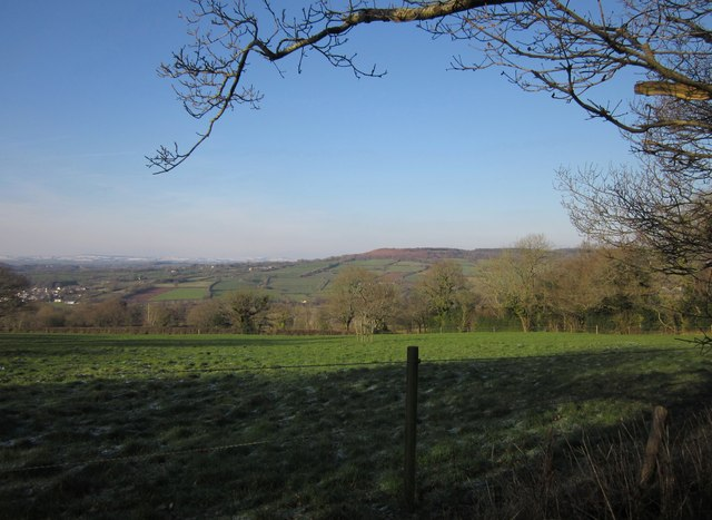 Pasture on Hackpen Hill