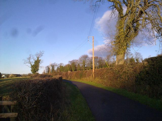 View along the lane