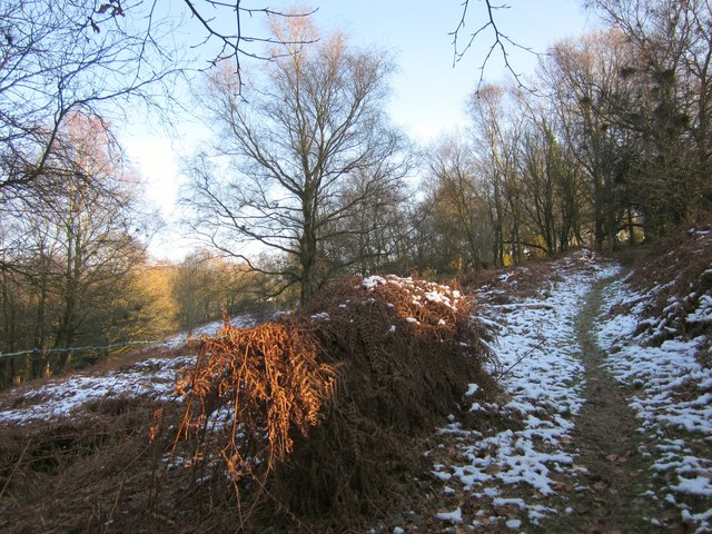 Footpath up Hackpen Hill