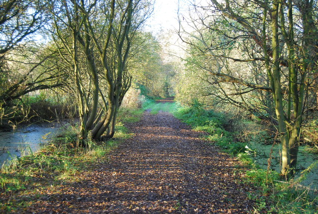 Footpath by Westbere Lake